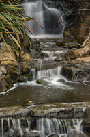 Waterfall in London WWT