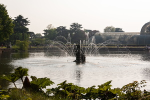 Fountain in Palm House Pond